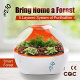 Ménage Smart-Forest Purificateur d'air avec le carbone activé, les anions et de filtres HEPA