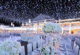 Les lumières de Noël de la lumière blanche DEL de lumières de chaîne de caractères de rideau en DEL, 20FT par 10 pi, 300 DEL lumineuses, contrôleur de 8 modes, plugin, imperméabilisent pour l'usage d'intérieur extérieur de DMA