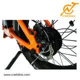 20 '' إطار العجلة سمين يطوي ثلم شاطئ طرّاد درّاجة كهربائيّة