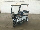 Rad-Passagier des Qualitäts-Erwachsen-drei elektrisches Dreirad/Trike mit schwanzlosem Motor