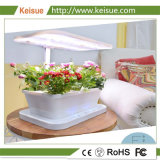 De plus en plus de culture hydroponique Machine Keisue LED