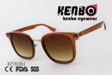 Пластмассовые очки с золотым металлические петли Kp70261
