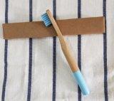 El bambú del amigo de Eco del ambiente eriza el cepillo de dientes (BC-T1040)