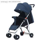 Baby-Spaziergänger, Baby-Buggy, Kinderwagen
