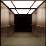 모든 가는선 스테인리스를 가진 싼 가격 6 사람 450kg 작은 전송자 엘리베이터