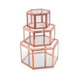 Caja de joyería transparente moderna del vidrio para la colección casera