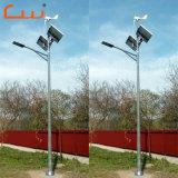 Straßenlaternedes Leistungs-Wind-Turbine-Generatorsystem-Wind-Solarmischling-LED
