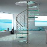 Escaleras en espiral personalizados Baranda balaustrada escalera de caracol con Vidrio pasos