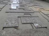 De Bovenkant van Countertop&Vanity van de Keuken van het Graniet van Antico van Bianco