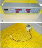Incubadora de 48 ovos de Hongzhou do indicador do LCD mini para a venda Bz-48