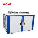 Unidade de condensação do mini Refrigeration do cavalo-força 2
