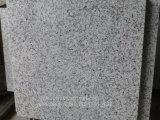 Balaの白い磨かれたか炎にあてられたか、または砥石で研がれた花こう岩の床タイルまたは壁のタイルか舗装のタイル