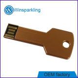 Material do disco instantâneo do USB da chave bom