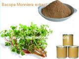 Bacopa純粋で自然なMonnieraのエキス、10%~60% Bacopasidesの10:1