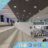 天井の建築材料の体育館の天井の壁パネル