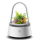 Plante en pot Purificateur d'air Portable Home & Office lampe de respiration faible bruit