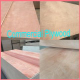 15mm BB/CCの等級のBintangorの表面合板のポプラのコア合板の家具