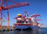 Logística de Ningbo/China ao agente de transporte de Koper Limassol