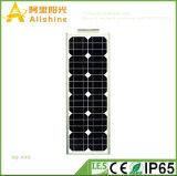 Nuovo 40W tutto in un lavoro solare dell'indicatore luminoso di via di disegno IP65 LED per la zona a temperatura elevata