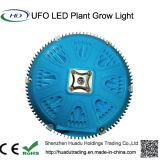 High Power 48 * 3W UFO LED Grow Light pour les plantes médicales