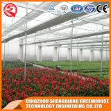 농업 식물성 꽃은 천막 PC 장 온실을 증가한다