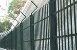 يغلفن سياج شبكة