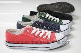 Больше чем 10 ботинок холстины цветов классицистических (SNC-210009)
