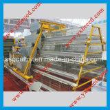 Les fournisseurs chinois de la machinerie agricole de la cage de couche 4 niveaux de la volaille