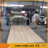 Linha de mármore de imitação da extrusão da placa do PVC da tecnologia nova
