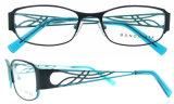 Figura del fronte del blocco per grafici del metallo dei blocchi per grafici degli occhiali di prescrizione