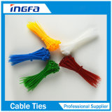 束のためのカラー紫外線保護プラスチック自動閉鎖ナイロンケーブルのタイ