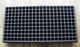 200 PS van cellen de Zwarte Pot van de Bloem