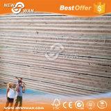madera contrachapada del anuncio publicitario de la madera contrachapada de 18m m BS1088 Maine