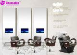 Popular de alta calidad de salón Espejo silla del salón Silla de peluquero (P2008F)