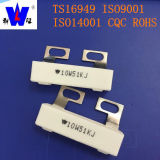 RX personalizzabile 27 ceramica resistore variabile