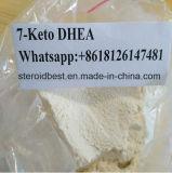 99.23% hoher Reinheitsgrad 7-Keto Dehydroepiandrosterone für Gewicht-Verlust CAS 566-19-8