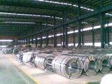 電流を通された鋼鉄コイルSt01z、St02z、St03z、DC51D+Z