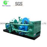 Le compresseur CNG à gaz naturel industriel