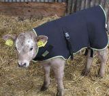 Bestiame che scalda i rivestimenti generali del vitello