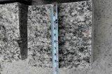 Il cubo/la pietra per lastricati/grigio/rosso/bianco/sono caduto/taglio veduto/spaccatura naturale
