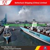 Livraison gratuite le fret de la Chine à la consolidation de la Suède à Göteborg LCL conteneur