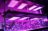47W SMD2835 LED coltivano il comitato chiaro
