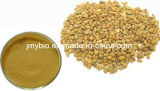 Выдержка 4-Hydroxyisoleucine 5%~20% семени Fenugreek верхнего качества естественная органическая