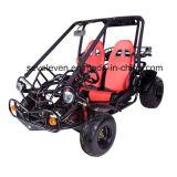 150cc уравновешивающего вала двигателя Go Kart