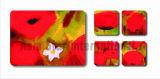 Vierkante Cork van Printin van de Bloem Onderlegger voor glazen voor Gift (CC19)