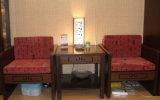 Schlafzimmer-Sofa (H 012)