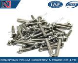 Vis lobulaires de tête de carter de plot d'hexagone de l'acier inoxydable ISO14583