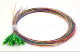 12 색깔 LC/APC Sm 0.9mm 광섬유 떠꺼머리