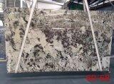 El esplendor de cuarcita blanca baldosas pulidas losas&+encimera