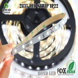 Tira de LEDS 5050 2835 IP65, 5m/Rollo tira flexible de LED